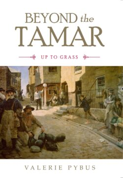 Beyond the Tamar
